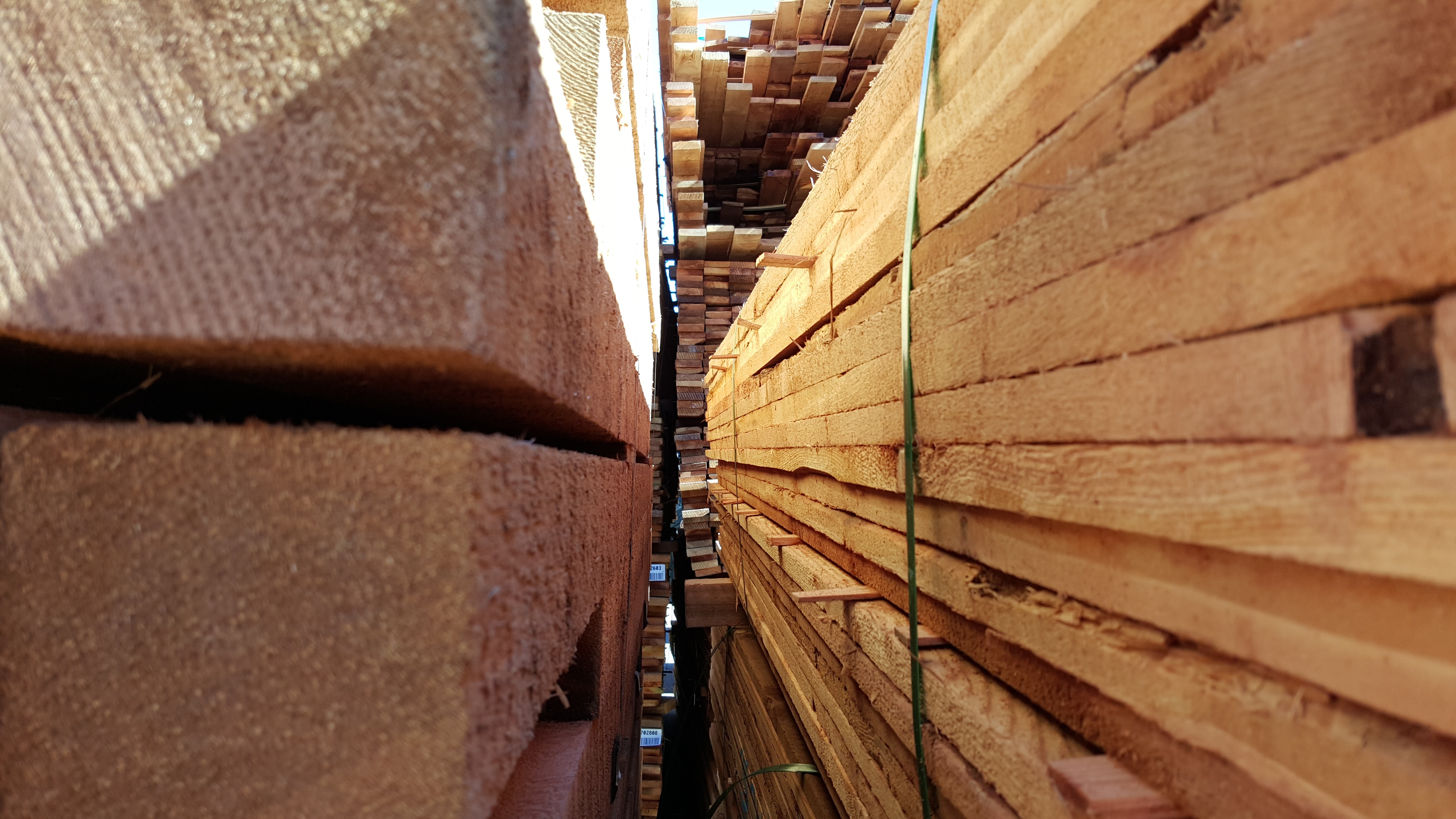 Benefits of Cedar Closets - Buy Red Cedarwood