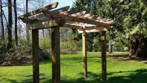 Custom Cedar Trellis Installation